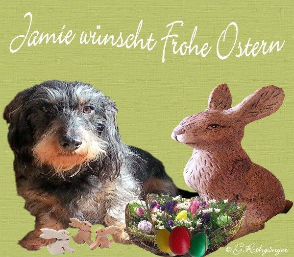 An den Beitrag angehängtes Bild: http://img3.dreamies.de/img/176/b/exitpzikbg3.jpg